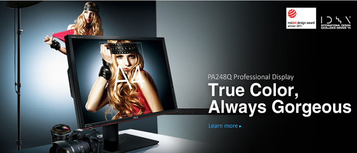 KSN stock the PA248Q professional series display monitors.