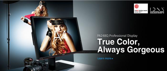 KSN stock the PA248Q professional series display monitors.
